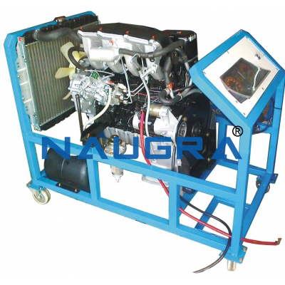 Diesel Engine ( cut model )