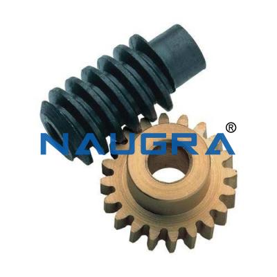 Spur Wheel Worm Gear Mechanism