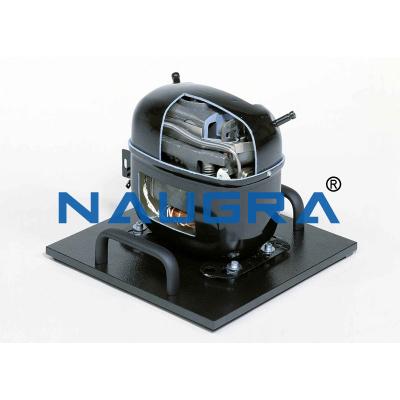 Cutaway Model Hermetic Refrigerant Compressor